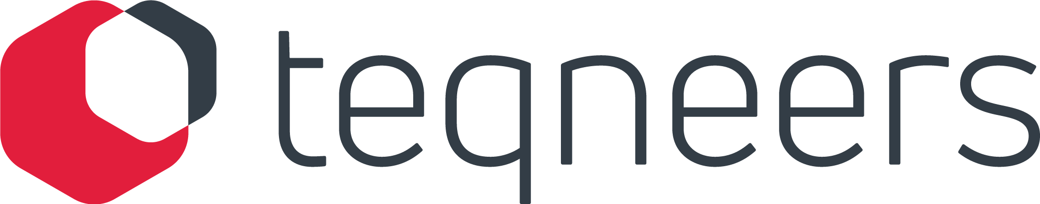 TEQneers GmbH & Co. KG